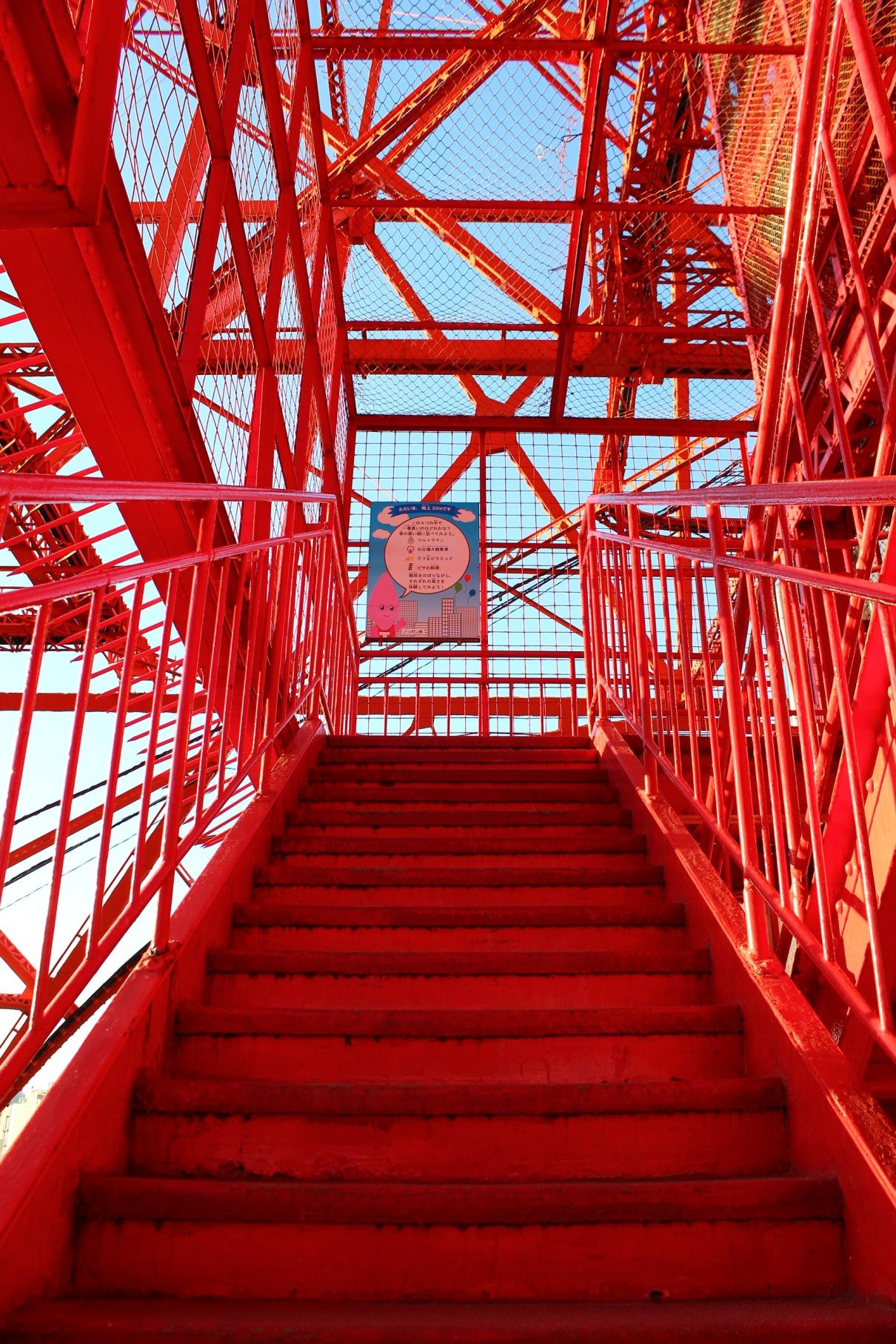 東京タワーの画像 p1_7